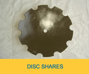 Disc Shares